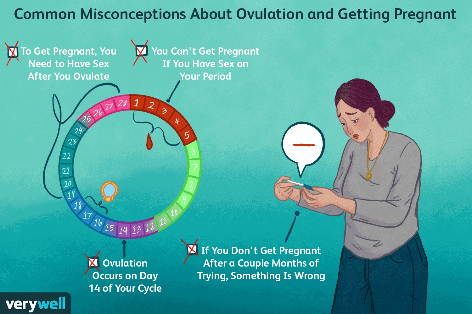16 Myths About Getting Pregnant And Ovulation