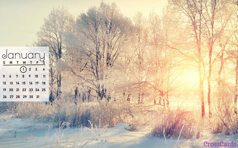 Beautiful January Desktop & Mobile Wallpaper - Free Backgrounds