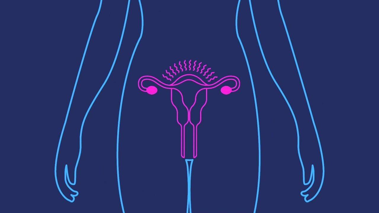 Depo-Provera | Birth Control Shot | Birth Control Injection