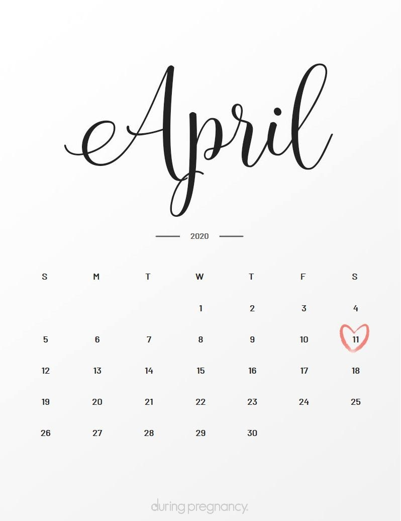 Due Date: April 11, 2020 | During Pregnancy