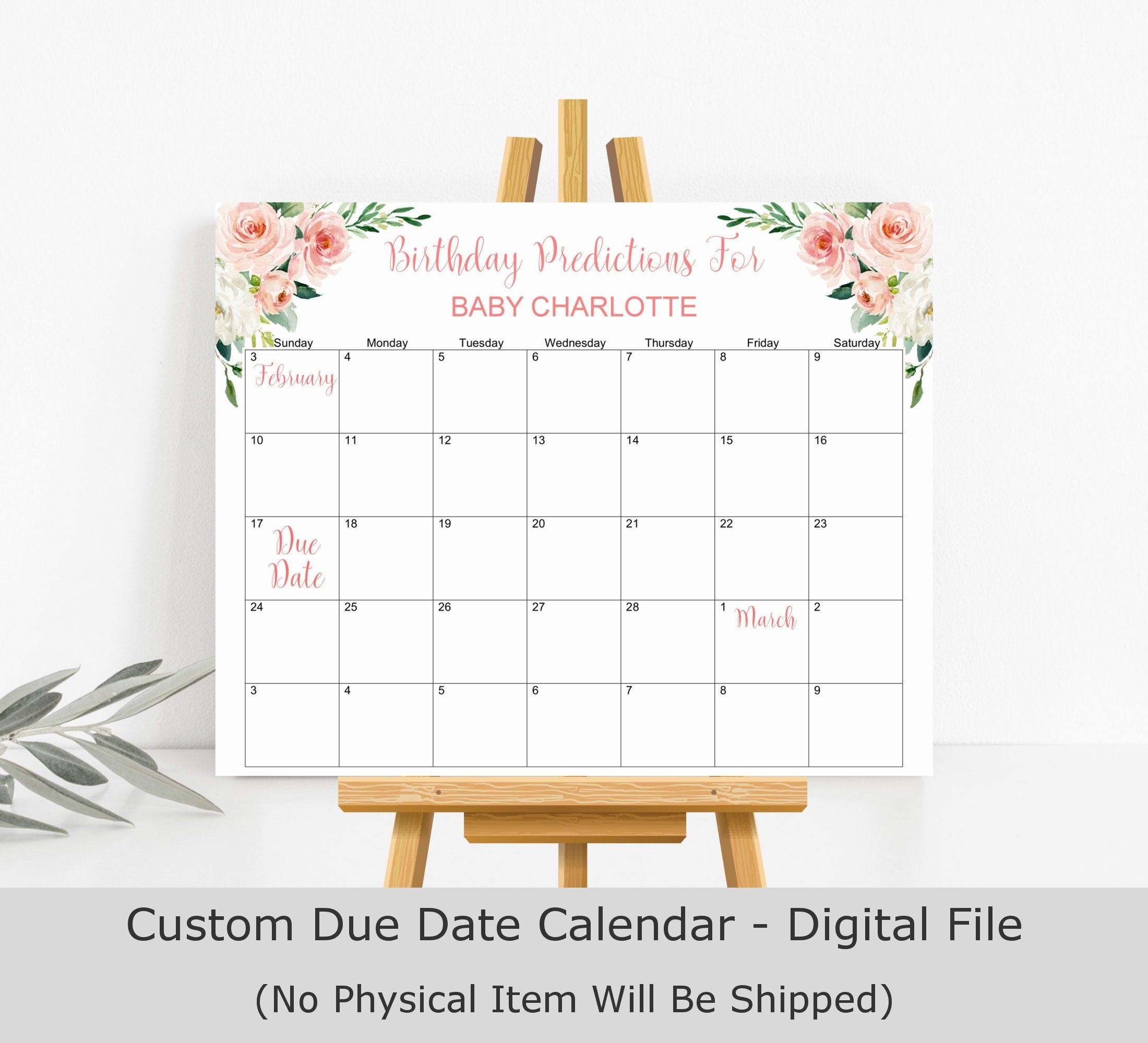 Guess Baby Birthday Game Blush Baby Shower Baby Predictions Game Pink Flora  Baby Shower Game Due Date Calendar Printable Digital File C80