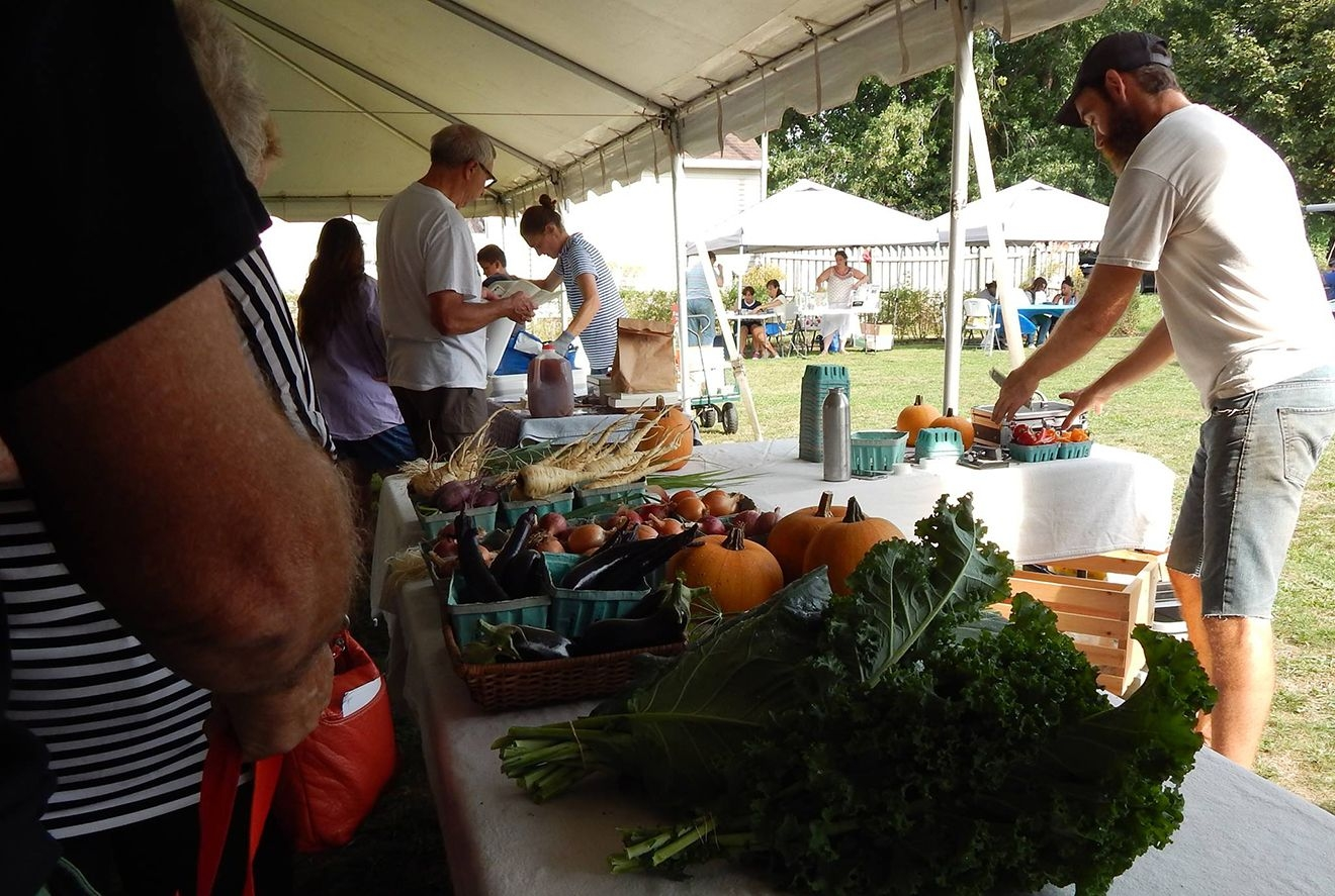 Little Italy Farmers Market Returns For Summer - Erie Reader