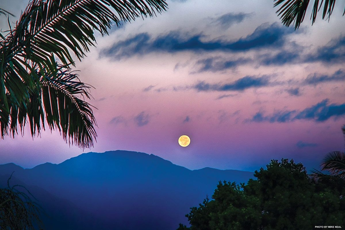 Planting By The Moon   Hawaiian Moon Calendar