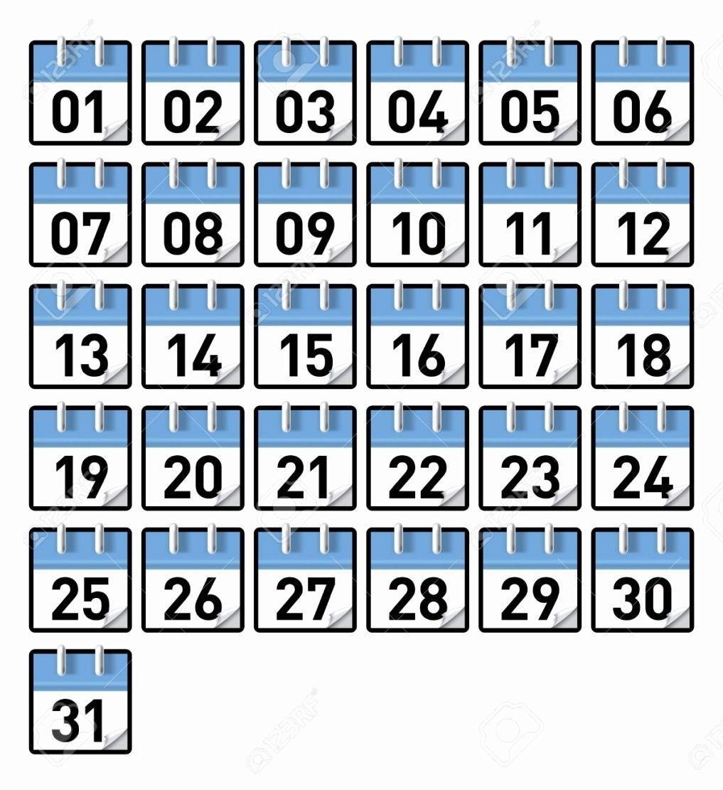 Printable Calendar Numbers January Calendar Numbers 1 31