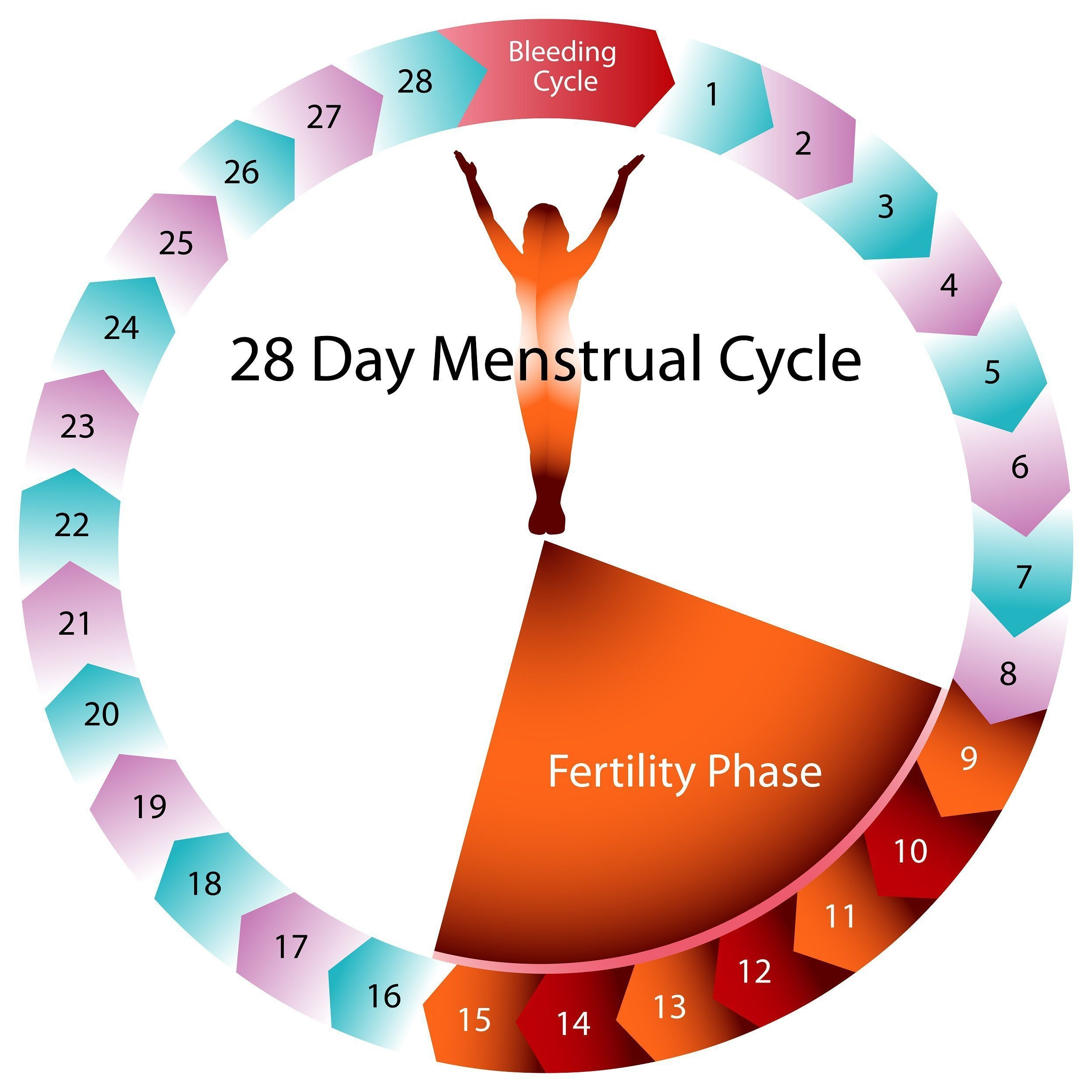 There Is More To Contraception Than The Pill | Menstrual