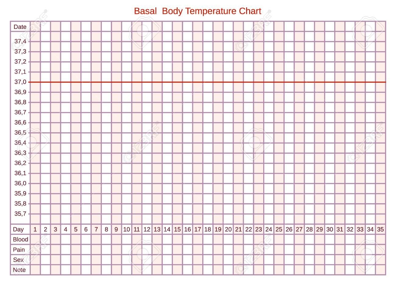 Vector Basal Chart Of Body Temperature On Celsius. Schedule For..