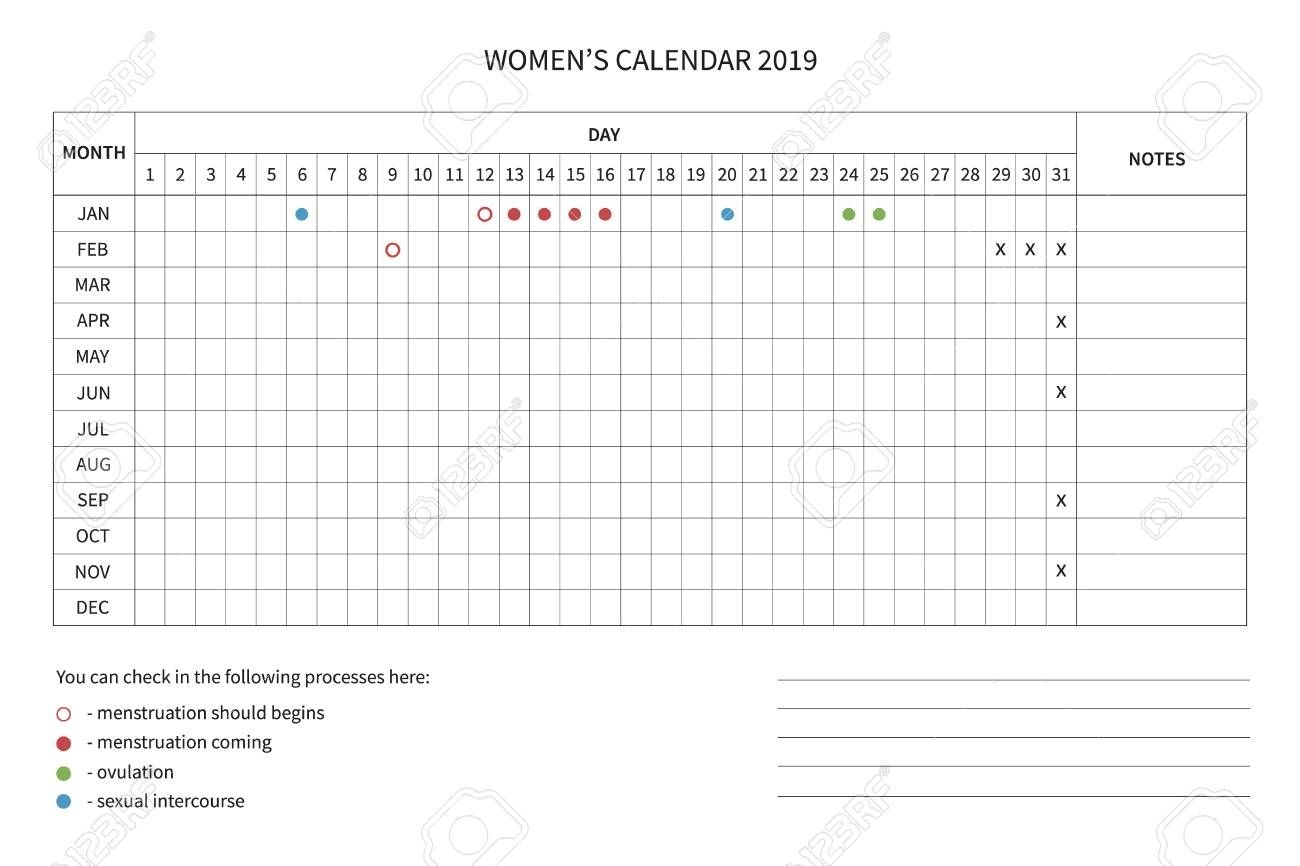 Vector Calendar Of The Women's Cycle. Menstrual Cycle. Women..