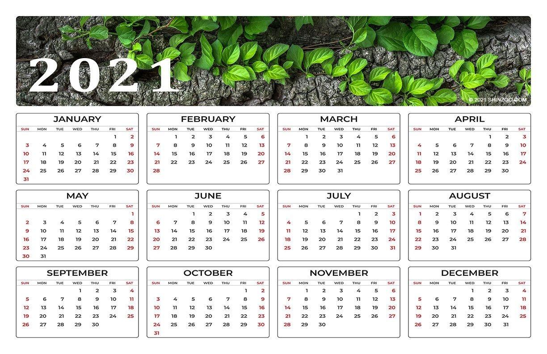 2021 Calendar 11X17 Printable Template: Tasty And Nutritious