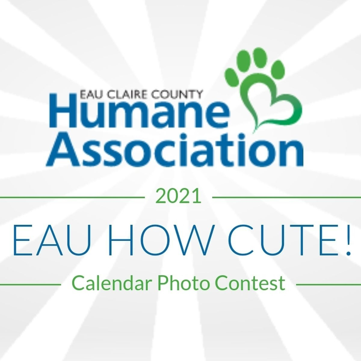 Eccha Pet Photo Contest Fundraiser