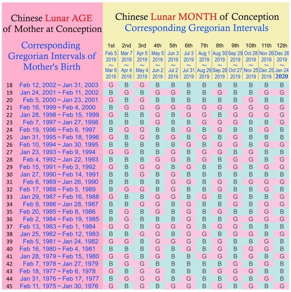 Mayan Calendar 2020 Predictions Template | Chinese Calendar