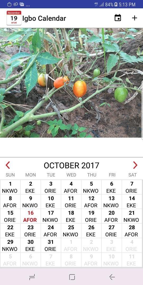2021 Calendar With Igbo Market Days | Academic Calendar