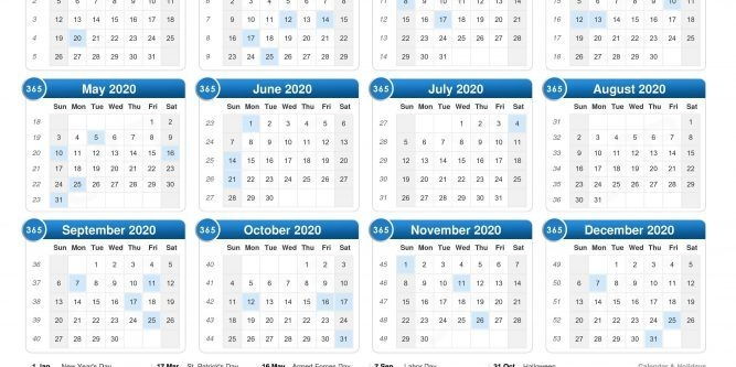 Calendar 2020 2021 2022 2023 | Free Printable Calendar