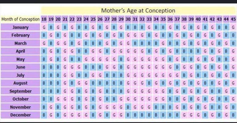 Chinese Calendar Gender Prediction - February 2021 Birth