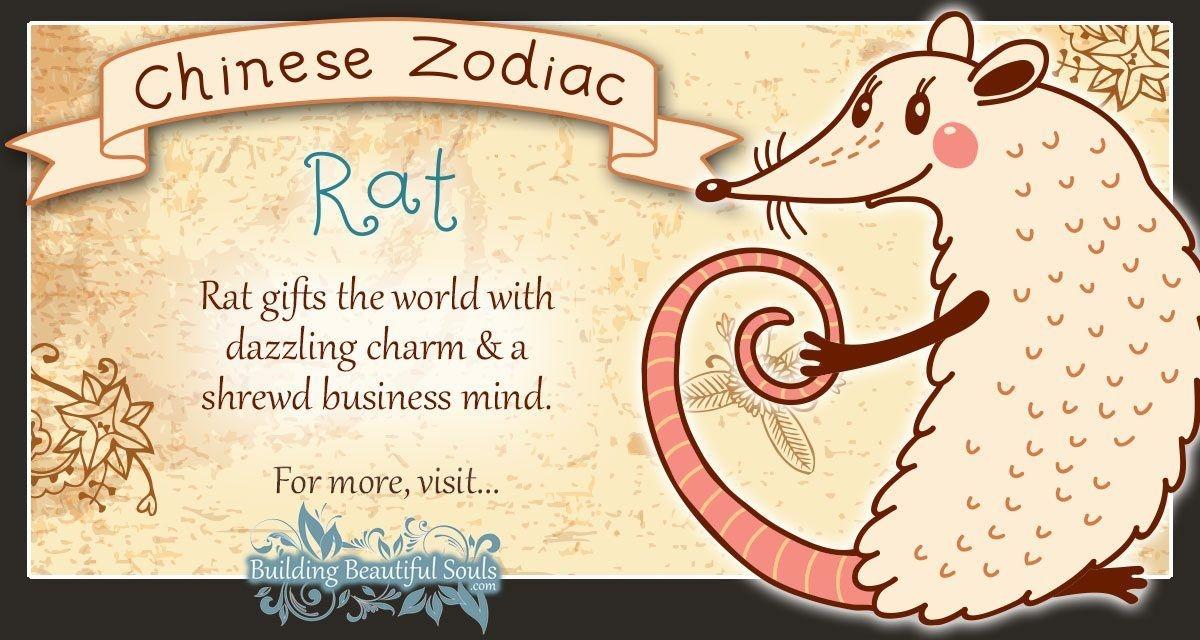 Chinese Zodiac Rat/Mouse Child Personality & Traits