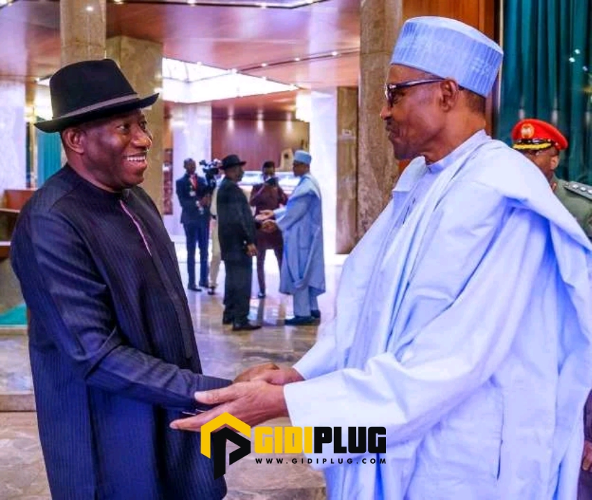 If Apc Succeed In Making Goodluck Jonathan President In